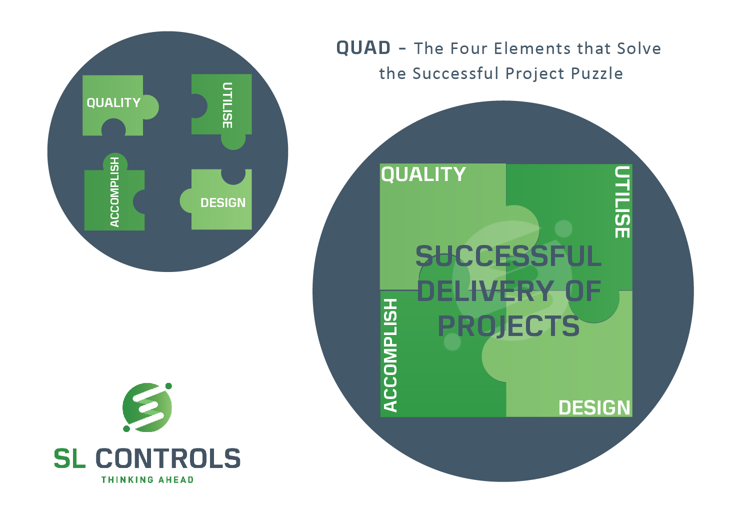 QUAD - the Four Elements that Solve the Successful Project Puzzle