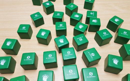 SL Controls Mindfulness Cubes